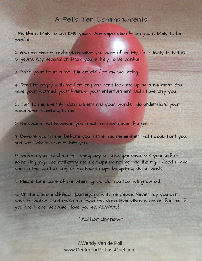 Pet Loss Poems to Support You! - Center for Pet Loss Grief